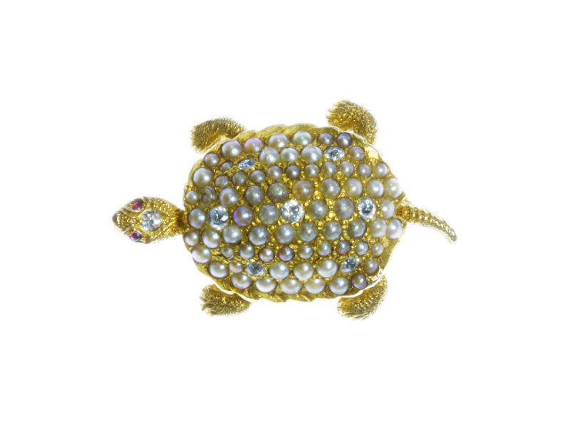 Diamond & pearl tortoise brooch